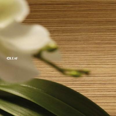 Front+mobila+cleaf_textura+protege+parol